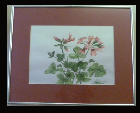 Wild and Beautiful by Shirley Alexander Watercolor $100